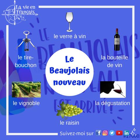 vocabulaire_le_Beaujolais_nouveau