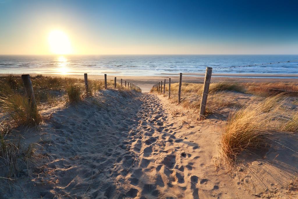 le_chemin_sur_une_plage