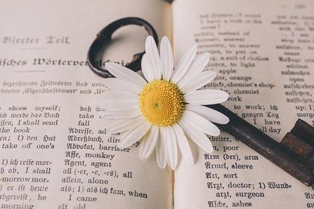 cle_et_fleur