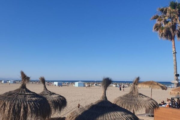 une plage_avec_des_palmiers