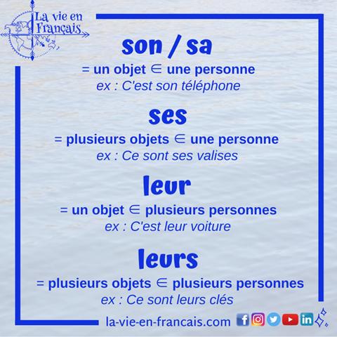 Resume_adjectifs_possessifs_son_sa_ses_leur_leurs